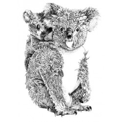 Tea Towel - Koala and Joey